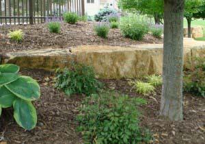 Contoured Plantings